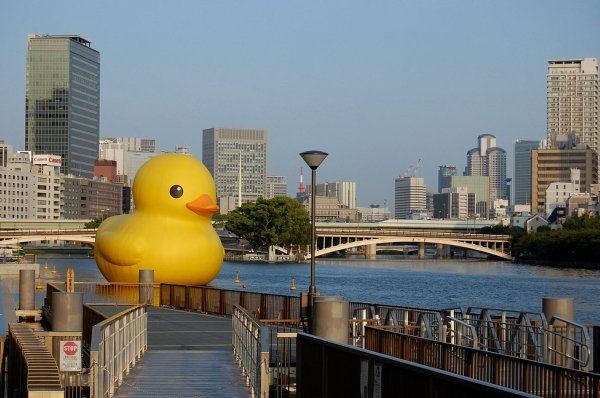 Duckb10